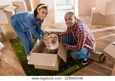 Happy African American Couple With Labrador Dog In Cardboard Box Moving To New Home