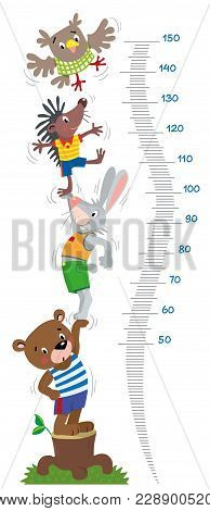 Meter Wall Or Height Meter With Funny Bear, Rabbit, Hedgehog And Owl. Height Chart Or Wall Sticker.