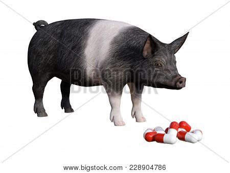 3d Rendering Of A Dark Pig Looking At Pills Isolated On White Background
