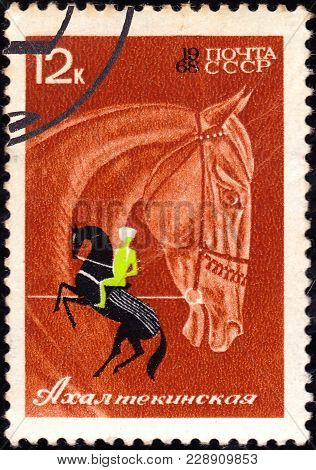 Ussr - Circa 1968: A Postage Stamp Shows A Horse Of Series