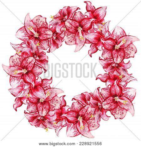 Amaryllis Flowers Wreath