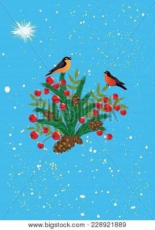 Bullfinches On A Branch Of Christmas Trees, Fir Cones, Red Berries Holly - Snowy Blue Background - V