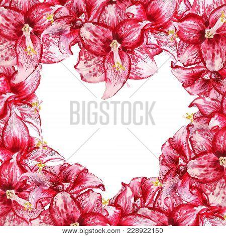 Heart Amaryllis Frame