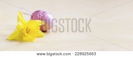 Web Banner Of A Yellow Easter Flower And A Pink Egg In Spring