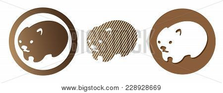 Set Of Wombat Logo. Australian Animal Vector Illustration. Isolated On White Background.
