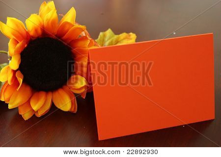 Blank note with sunflower