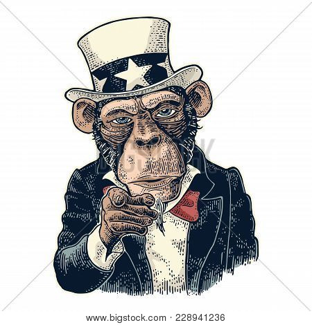 Monkey Uncle Sam with pointing finger at viewer, from front. I Want You. Vintage color engraving illustration for recruiting poster. Isolated on white background. Hand drawn design element poster