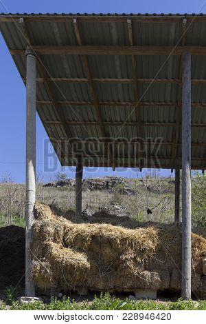 Hay Shed Cluster Straw. Open Space On The Air And The Blue Sky.