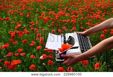 Opium Poppy, Agile Business, Ecology. Drug, Narcotics, Opium, Novel. Poppy, New Technology, Remembra