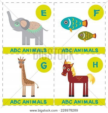 Abc Alphabet For Kids. Set Of Funny Elephant Fish Giraffe Horse Cartoon Animals Character. Cards For