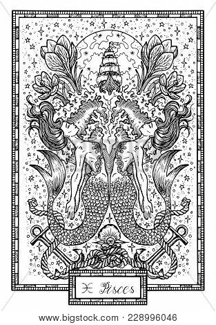 Zodiac Sign Fish Of Pisces With Crocus Flower, Old Ship And Happy Numbers. Hand Drawn Fantasy Graphi