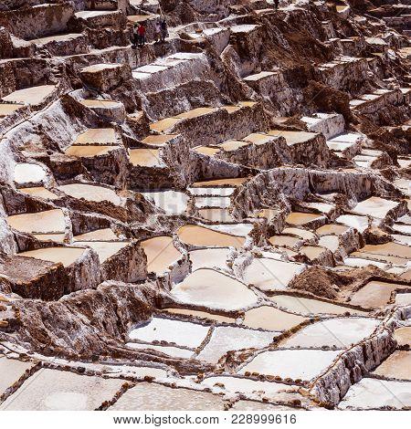 The Salt Evaporation Pond At Maras Salinas De Maras Near Cusco, Peru