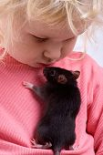 close-up portrait of young girl with rat on white background poster