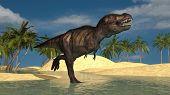 running tyrannosaurus poster