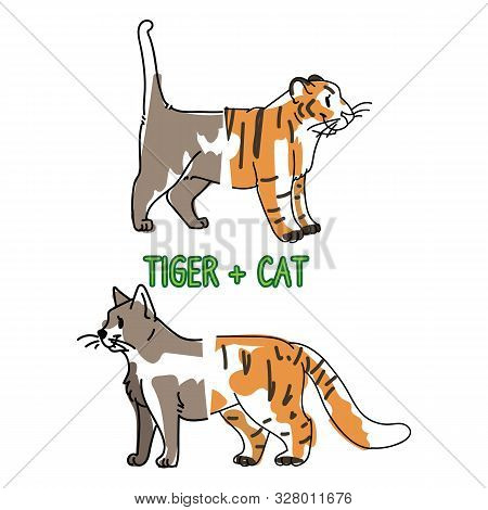 poster of Childish tiger and pet cat animal splice vector illustration. Hand drawn doodle inked wildlife animal creature mixture, trendy feline and kitty monster clipart.