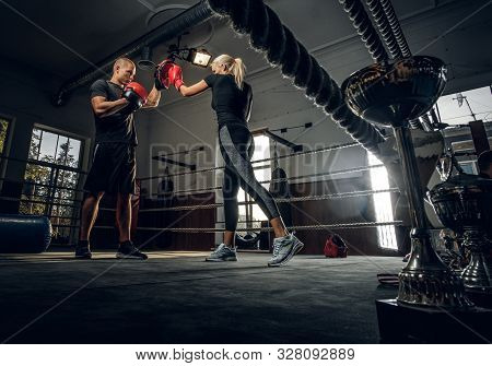 Boxing Trainer And His New Student Have A Sparring On The Ring Wearing Boxing Gloves.