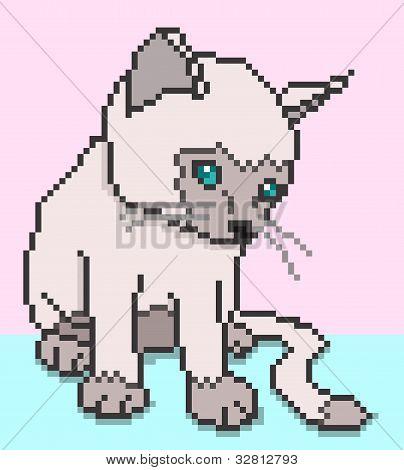 Pixel Kitten