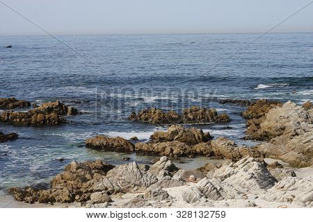 This Is An Image Of The Rocky Shore Of Pacific Grove, California.
