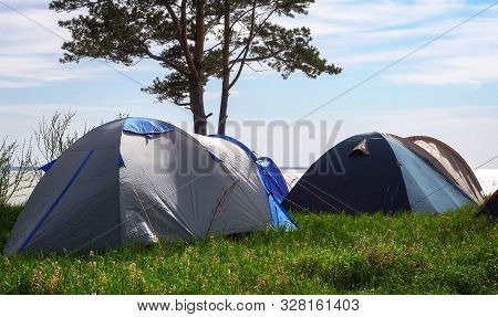 A Tent Camp By The Sea On A Meadow Of Green Grass Under The Trees. The Concept Of A Pleasant Family