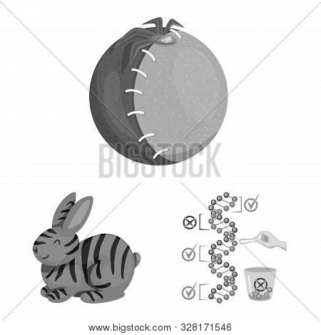 Isolated Object Of Transgenic And Organic Sign. Set Of Transgenic And Synthetic Stock Vector Illustr