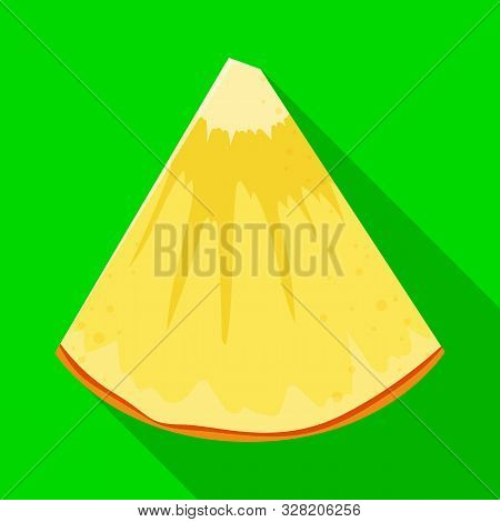 Vector Illustration Of Ananas And Slice Icon. Web Element Of Ananas And Vitamin Vector Icon For Stoc