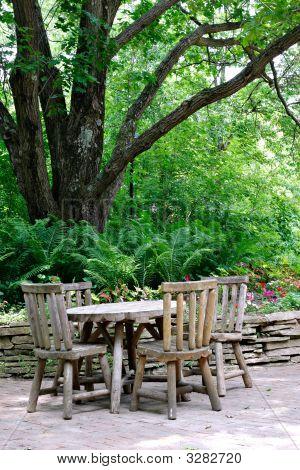 Cafeteria Tables Under Big Tree