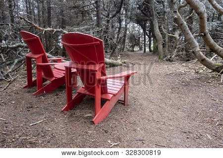 Two Red Adirondack Chairs Under Dead Trees In Gros Morne National Park, Newfoundland