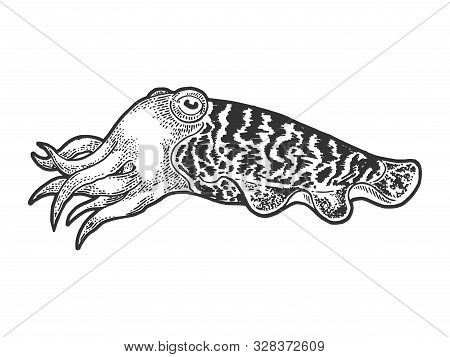 Cuttlefish Marine Mollusc Animal Sketch Engraving Vector Illustration. T-shirt Apparel Print Design.