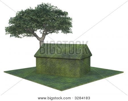 Greem House And Tree