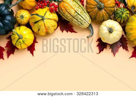 Natural Autumn Decor Idea, Fall Or Thanksgiving Card Background With Copy Space For A Greeting Text
