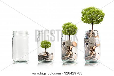 Money Coins And Tree Growing In Jar. Profit On Deposit In Bank And Dividend For Stock Investment Con