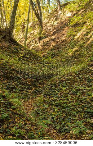 Path On A Bottom Of A Gully Landform