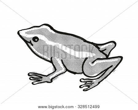 Retro Cartoon Mono Line Style Drawing Of A Monte Iberia Eleuth Frog Or Eleutherodactylus Iberia, An