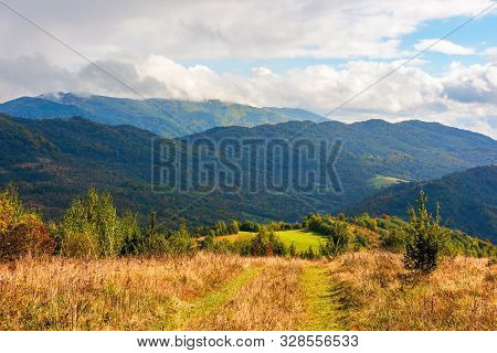 Rural Grassy Fields Near The Forest On Carpathian Hills. Beautiful Agricultural Scenery In Early Aut