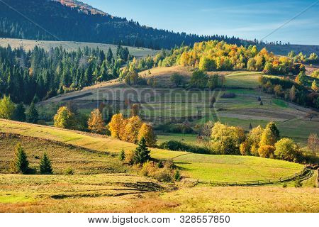 Sunny Autumnal Rural Scenery In Mountains. Beautiful Landscape With Rolling Hills. Trees In Colorful