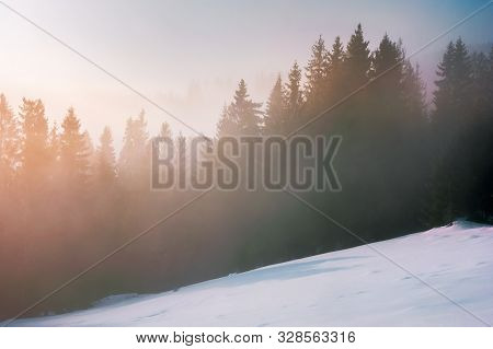 Foggy Sunrise In Winter. Spruce Forest On A Snow Covered Slope In Glowing Mist. Beautiful Nature Sce