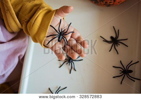 Hands Of A Child Playing With Black Rubber Spiders Toys. Halloween October Concept.