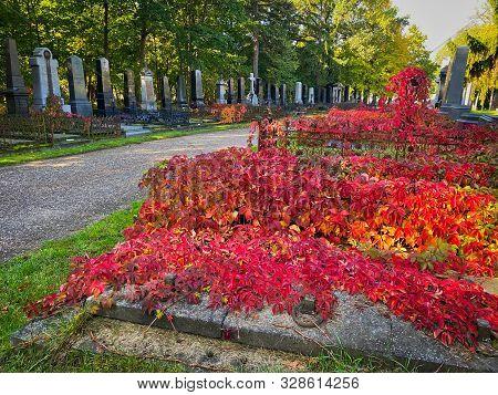 Zentralfriedhof, Vienna, Austria - October 15, 2019: The Zentralfriedhof Is The Largest Cemetery Of