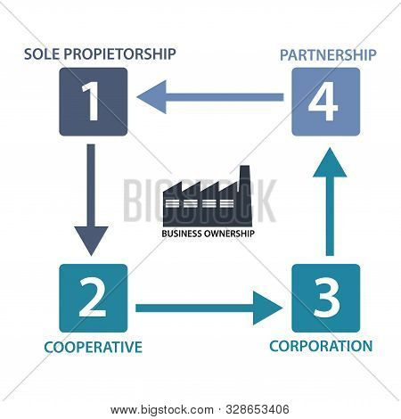 Business ownership infographic, flat design. Concept map about Business ownership poster