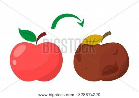 Bad Rotten Apple. Red Fresh Fruit Become Bad Vector Isolated. Organic Rotten Vegetarian Food.