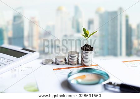 The Tree  Growing On Money Coin Stack For Investment,  Business Newspaper With Financial Report On D
