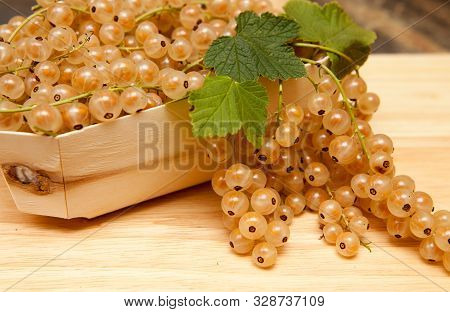 White Currants Freshly Picked A Wooden Punnet Of Freshly Picked White Currants