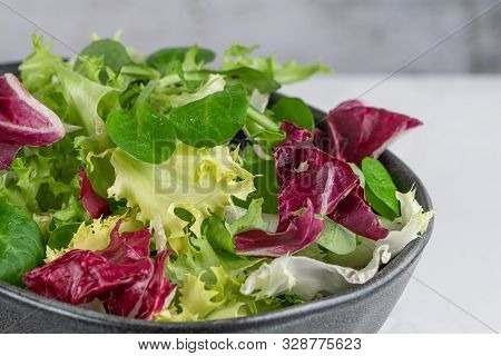 Salad Mix Leaves Background. Fresh Salad Pattern With Rucola, Purple Lettuce, Spinach, Frisee And Ch