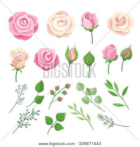 Rose Elements. Pink And White Roses Flowers With Green Leaves And Buds. Watercolor Floral Romantic W