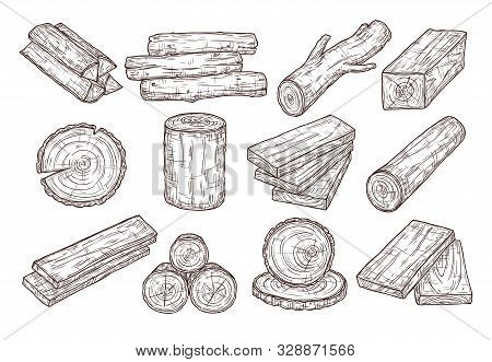 Hand Drawn Lumber. Sketch Wood Logs, Trunk And Planks. Stacked Tree Branches, Forestry Construction