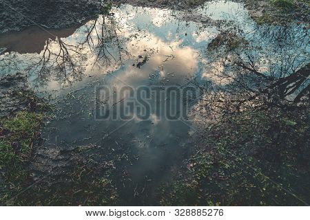 Big Puddle With Reflections Of The Sky