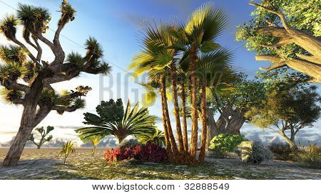 Traveller's tree (ravenala madagascariensis) poster