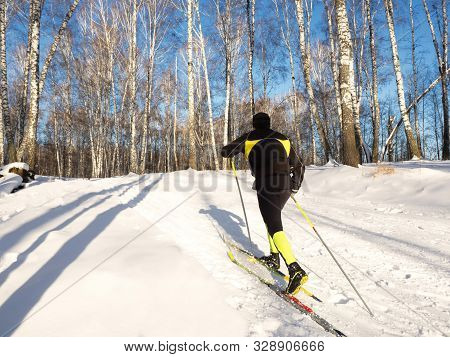 Cross-country Skiing During A Training Session In The Winter Forest On A Bright Day.