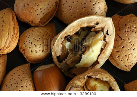 Lot Of Nuts