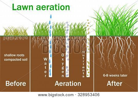 Lawn Aeration For Active Plant Growth. Free Access Of Water And Air To Soil. Process Steps Before An